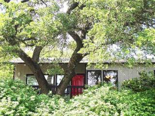 Kaleido House - 2/1 duplex by Zilker, 2 mi to DT! - Austin vacation rentals