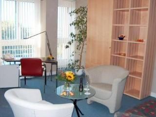 EMA house Executive Residential Suite, 1BR - Zurich Region vacation rentals