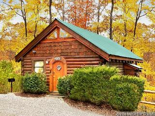 Love Shack - Pigeon Forge vacation rentals