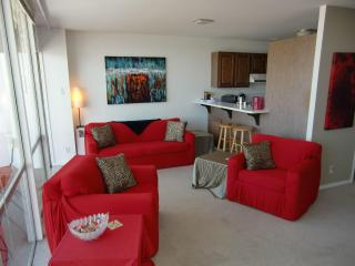 Penthouse, Central, Amazing Bay View, Balcony, Sleeps 6 - San Francisco vacation rentals
