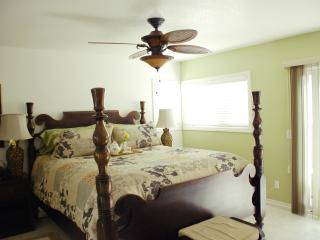 Bahama House 3 bed-Walk to Beach-Available Monthly - Dana Point vacation rentals