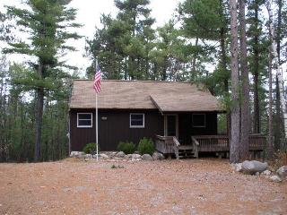 The 3 Bears Cabin - Whiteface Mountain Region vacation rentals