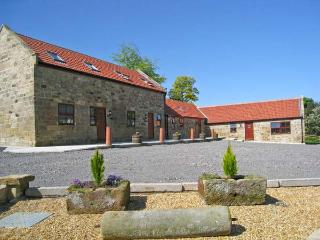 THE COW BYRE, pet-friendly, country holiday cottage, with a garden in Lingdale, Ref 7403 - Saltburn-by-the-Sea vacation rentals