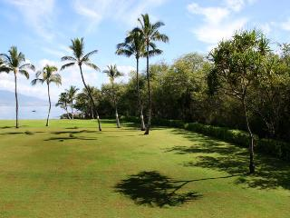 KIHEI SURFSIDE, #214*^ - Kihei vacation rentals