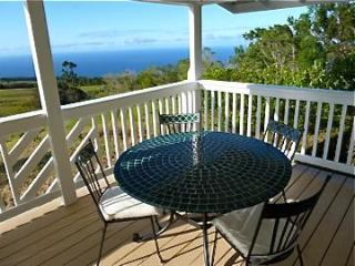 Beautiful, Newly Renovated, Panoramic Ocean View - Hamakua Coast vacation rentals