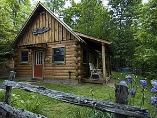 Cathey Cabin - The Cathey Cabin, Bryson City, NC Smoky Mountains - Bryson City - rentals