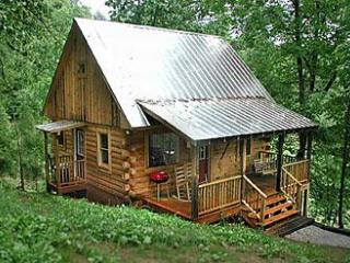 The Watkins Cabin, Bryson City, North Carolina - Bryson City vacation rentals