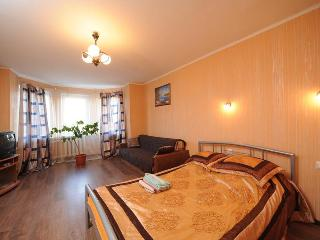 Nice Podol 1-room apartment in Kiev - Kiev vacation rentals