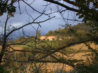 Charming Apartment in a Tuscany Farmhouse - Londa vacation rentals