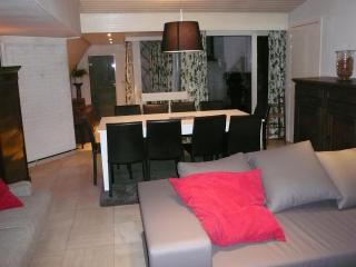 Typical Mansion in heart of the historical center - Flanders & Brussels vacation rentals