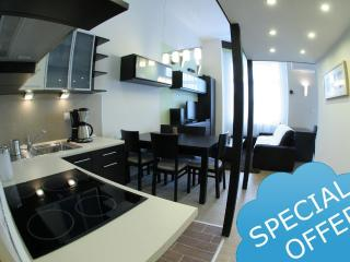 Exclusive Place,Balcony,A/C, FREE airport transfer - Hungary vacation rentals