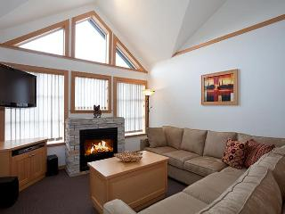 Deluxe 1 bedroom plus loft - SKI IN SKI OUT! - British Columbia Mountains vacation rentals