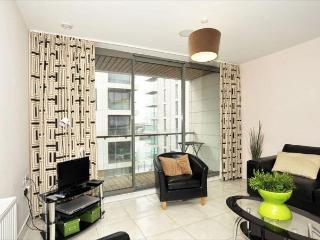 Titanic Quarter Apt, Belfast City Centre - County Antrim vacation rentals