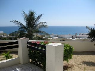 view from patio - Endless Ocean View - walk to Costa Azul Beach - San Jose Del Cabo - rentals