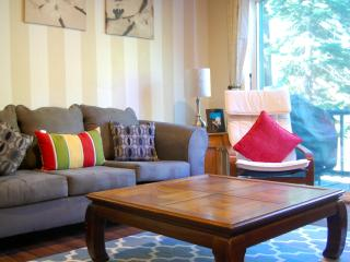2 Bedroom Charming Condo next to Heavenly! - South Lake Tahoe vacation rentals
