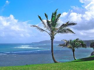 Sealodge D1 - Princeville vacation rentals