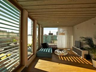 Metropolitan Duplex Apartment - Czech Republic vacation rentals