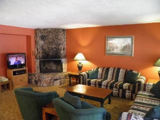 Gorgeous 3 BR-2 BA Condo in South Lake Tahoe (1149 Herbert #B) - South Lake Tahoe vacation rentals