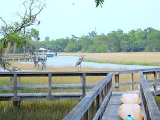 Big Chill....on the Waterfront ~ Paradise Found! - Charleston vacation rentals