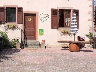 Harzala - Charming holiday rental in Alsace - Bergheim vacation rentals