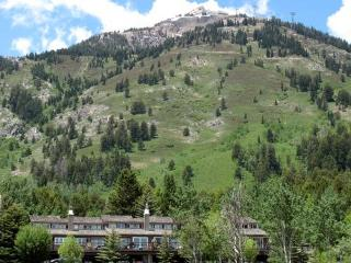 5 bed /4 ba- SNOW RIDGE #4 - Teton Village vacation rentals