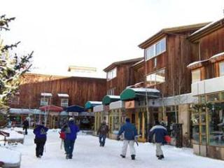 Lionshead Centre #307 - Vail vacation rentals