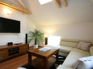 Attic Olivova - Luxury two bedroom apartment - Prague vacation rentals