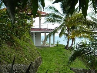 House on a hill overlooking the Pacific Ocean - Mal Pais vacation rentals