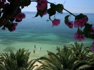 VILLA PALMS-Amazing beach accommodation 4-20 - Split vacation rentals