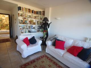 Petit Tresor  -  A superb one bedroom little haven - Cote d'Azur- French Riviera vacation rentals