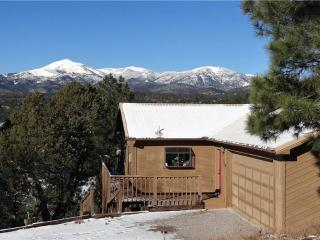 Dodson's Double Decker - Ruidoso vacation rentals