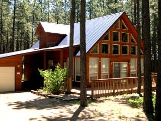 Fabulous House in Angel Fire (HO 13) - New Mexico vacation rentals