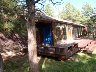 Gorgeous House in Angel Fire (HO 621) - Angel Fire vacation rentals