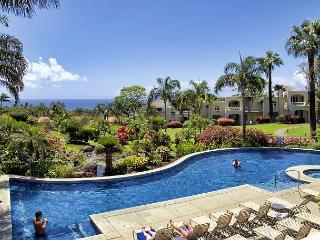 Palms at Wailea 1904 - Kihei vacation rentals