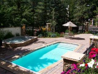 HOLIDAY SPECIALS! 2B/2B in VAIL VILLAGE EMAIL NOW! - Vail vacation rentals
