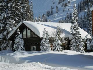Black Bear Chalet Ski In/Walk Out - Alta vacation rentals