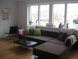 Family friendly Copenhagen apartment near the metro - Copenhagen vacation rentals