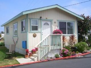 Adorable Beach Cottage 2 blocks to Moonlight Beach - Encinitas vacation rentals