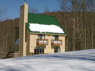 Canaan Valley Slopeside Ski In Ski Out Chalet - Canaan Valley vacation rentals