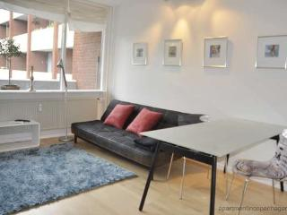 Sofiegade - Close To Metro - 130 - Copenhagen vacation rentals