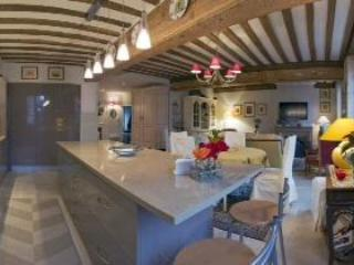 Le Pinot-Elegant 2 bedroom apartment in Beaune. - Beaune vacation rentals
