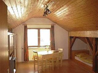 Vacation Apartment in Homberg (Efze) - 387 sqft, quiet, clean, relaxing (# 1197) - Homberg vacation rentals