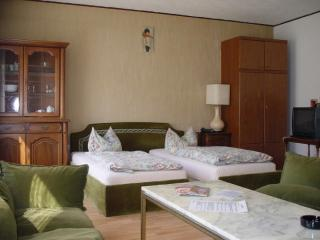Vacation Apartment in Düsseldorf - central, nice, cozy (# 1768) - North Rhine-Westphalia vacation rentals