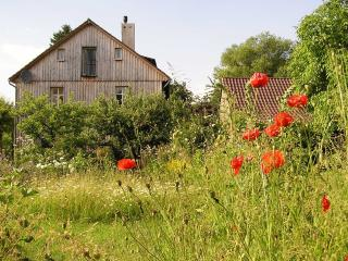 Vacation Apartment in Homberg (Efze) - 915 sqft, hiking trails directly at the house, internet, washing… - Homberg vacation rentals