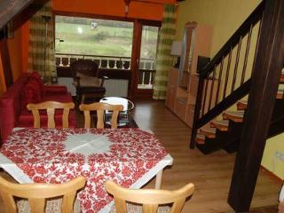 Vacation Apartment in Bodenfelde - nice lawn, right on the river, free WIFI (# 1914) - Wahlsburg vacation rentals