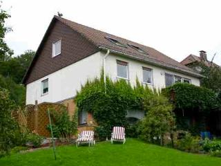 LLAG Luxury Vacation Apartment in Osterode am Harz - 700 sqft, BBQ area, terrace (# 1607) - Lower Saxony vacation rentals