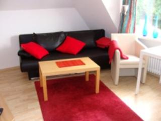 Vacation Apartment in Ostercappeln - 517 sqft, pristine, quiet, modern (# 1606) - Lower Saxony vacation rentals