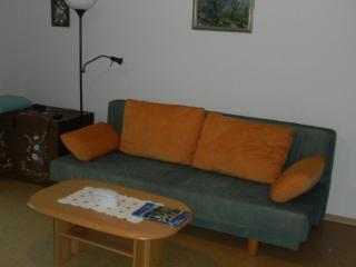 Vacation Apartment in Alpirsbach - 732 sqft, natural cork floor, parking space, child's bed available… - Baden Wurttemberg vacation rentals