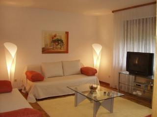 Vacation Apartment in Wetzlar - 753 sqft, nice, clean (# 217) - Wetzlar vacation rentals