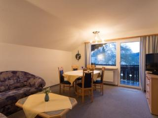 Vacation Apartment in Oberstdorf - 560 sqft, central, comfortable (# 2026) - Oberstdorf vacation rentals